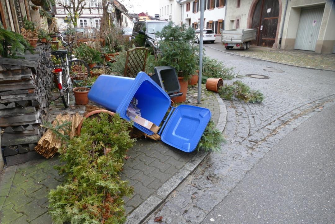 Folgen des Sturms in Schopfheim  | Foto: Amy Ley