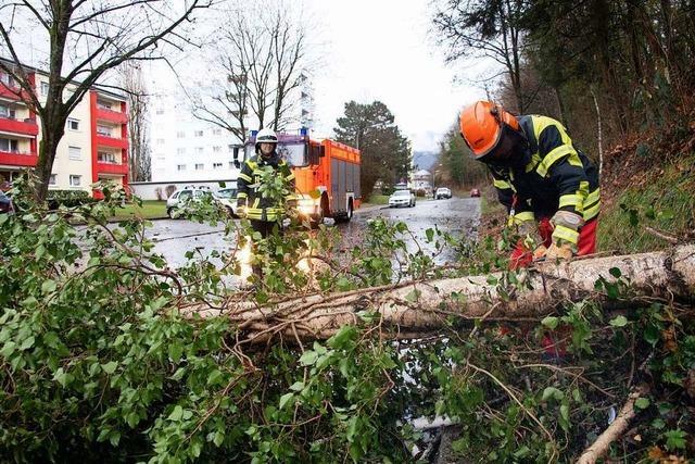 24-jähriger Kranführer wird in Neuenburg von Bauteil erschlagen