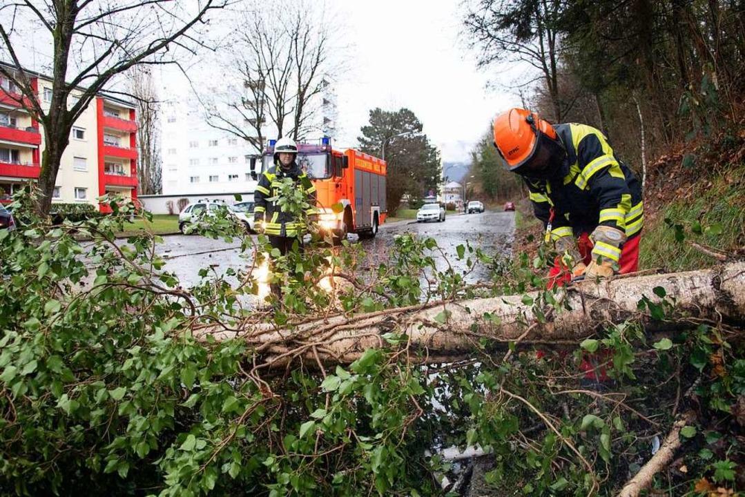 Nach den Sturmböen am Dienstagmorgen l... Feuerwehr Müllheim beseitigen musste.  | Foto: Volker Münch
