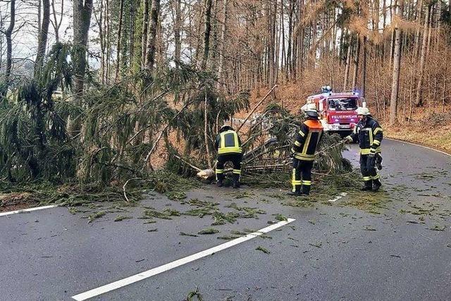 Feuerwehr Wehr muss Bäume von Straßen räumen