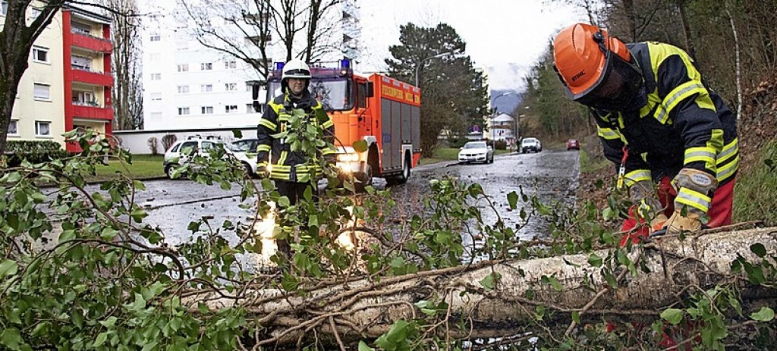 Nach den Sturmböen  lag in der Müllhei...erchelestraße ein Baum auf der Straße.    Foto: Volker Münch