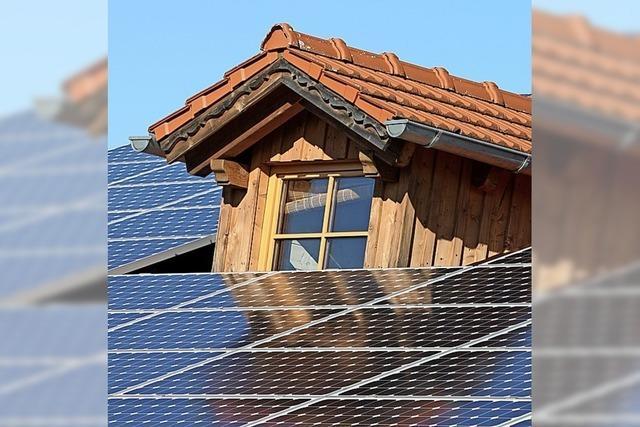 Bäume müssen Fotovoltaikanlagen nicht weichen