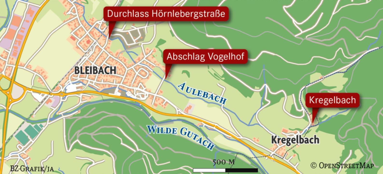 An den  markierten Stellen ist Handlungsbedarf.   | Foto: Gemeinde Gutach