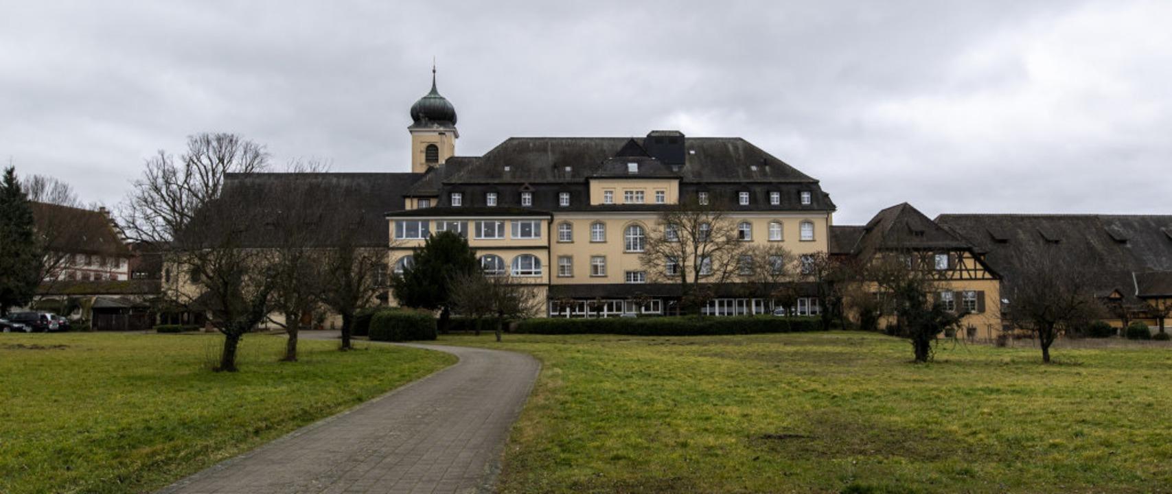 Das Malteserschloss in Heitersheim sor...tzt für viel Aufregung in Heitersheim.    Foto: Patrick Seeger (dpa)