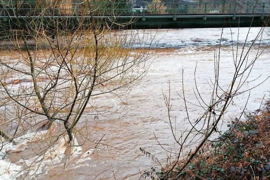 Wasser unter der Eisenbahnbrücke nahe Jungfernsteg in Waldkirch (Foto: Sylvia Sredniawa)