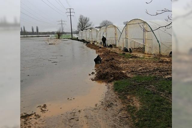 Die Elz führt Hochwasser