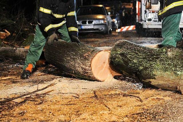 Sturm sorgt in Bad Säckingen für umgestürzte Bäume und einen Verkehrsunfall