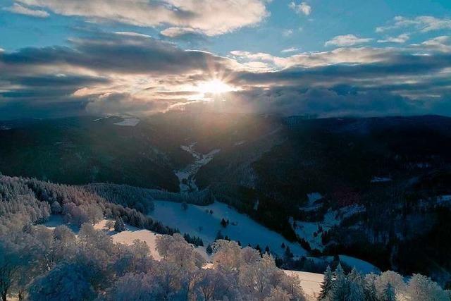 Das Biosphärengebiet Schwarzwald zeigt seinen ersten Film