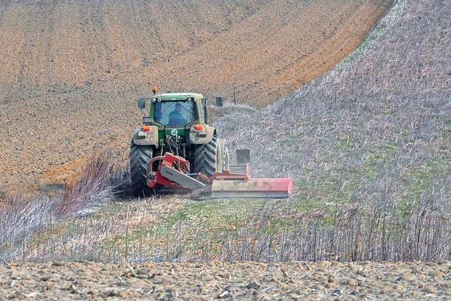 Warum sich Landwirte im Kreis Lörrach mit Lichtverschmutzung befassen