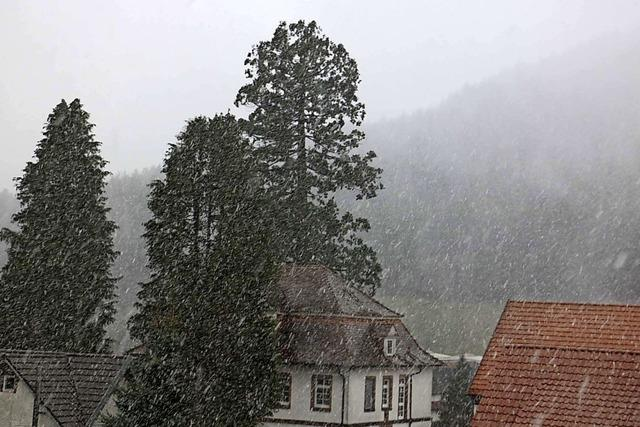 Winter in Seelbach