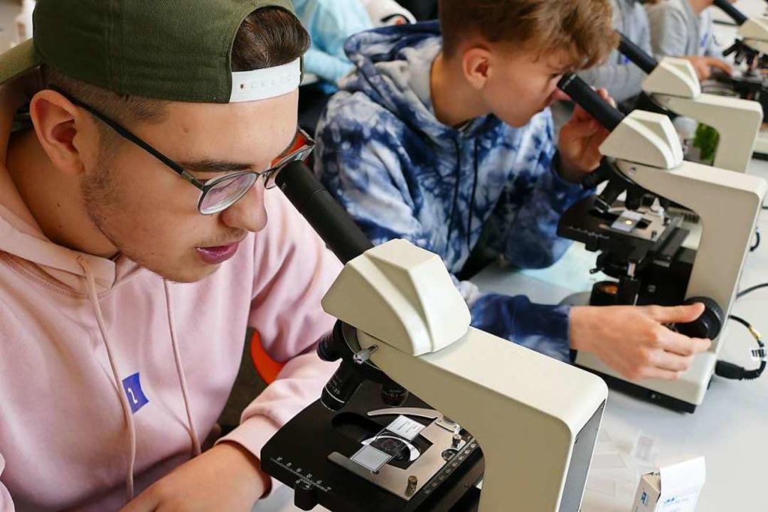 Informationstag an den beruflichen Gymnasien Lörrach  | Foto: Maurice Mommer