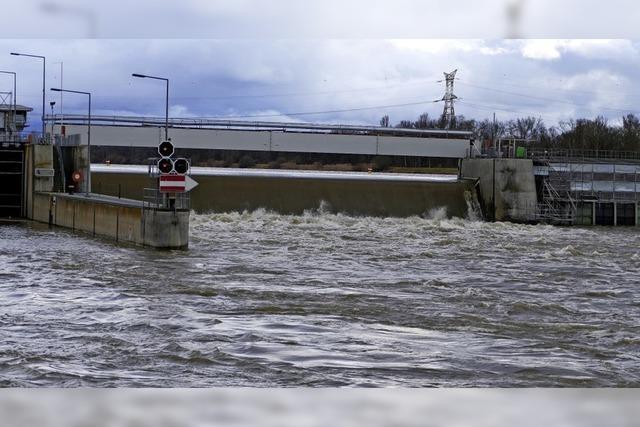 Kein Hochwasser am Rhein bei Breisach
