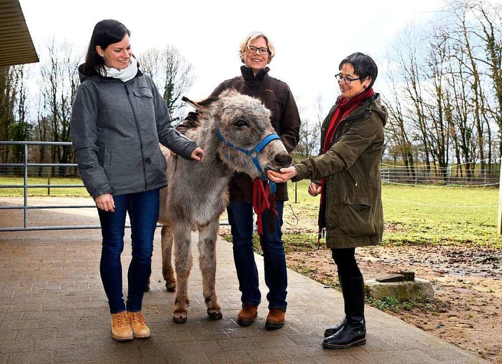 Birte Boxler, Nicole Schmalfuß und Sus...sdame Rosi im Gehege auf dem Mundenhof  | Foto: Thomas Kunz