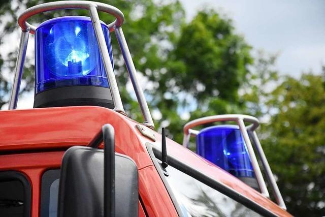 Rauchende Mikrowelle löst Feuerwehreinsatz in Steinen aus