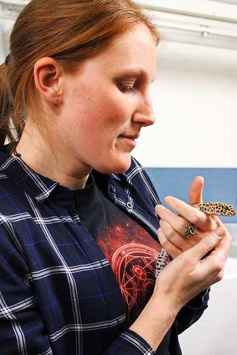 Die Experten von Dragon Shelter erklär...und Schlangen am schnellsten einfängt.  | Foto: Annika Sindlinger