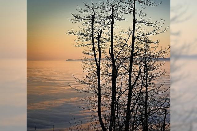 Ein Hoch auf den Blauen - und die Sehnsucht nach Meer