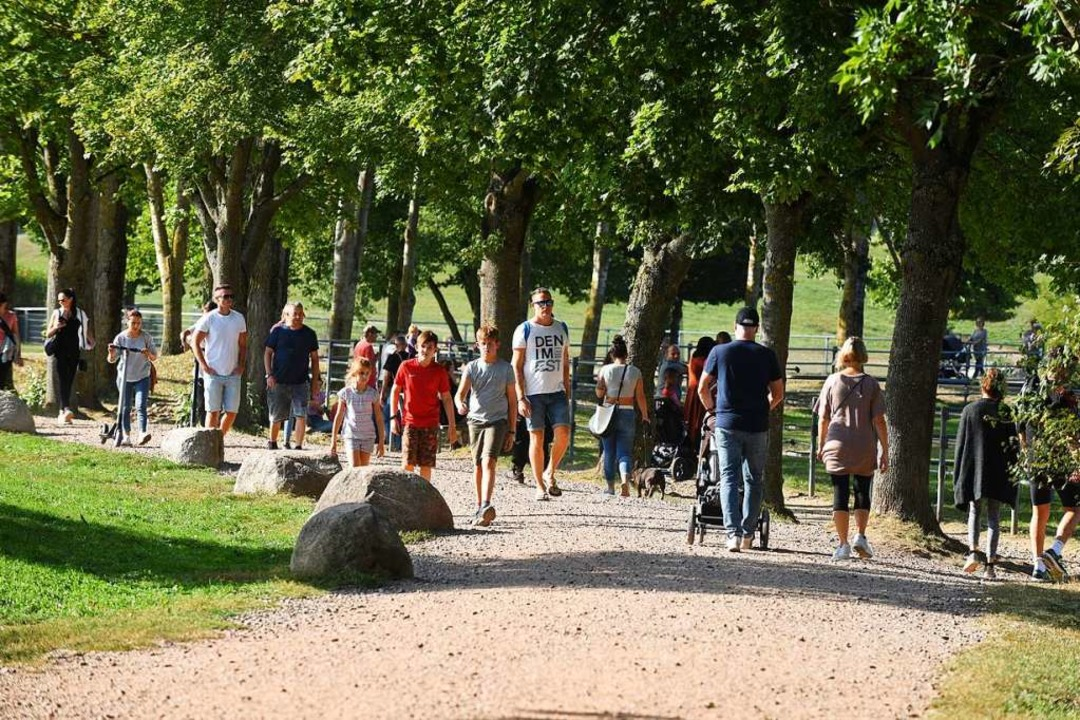 Das Tiergehege Mundenhof: Nach dem Vor... künftig verhindern soll (Archivbild).  | Foto: Rita Eggstein