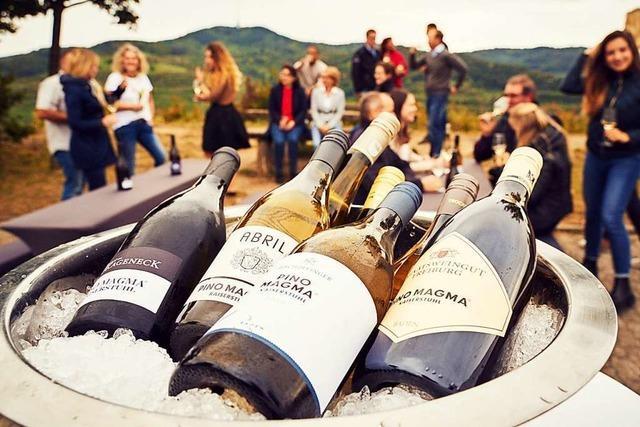 Bis zu 40.000 Flaschen verkauft: Der Kaiserstühler Markenwein übertrifft die Erwartungen