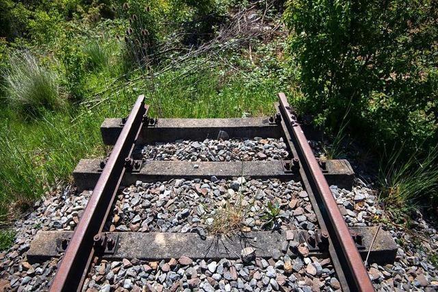 Eisenbahnstrecke Freiburg-Colmar soll zum Thema werden