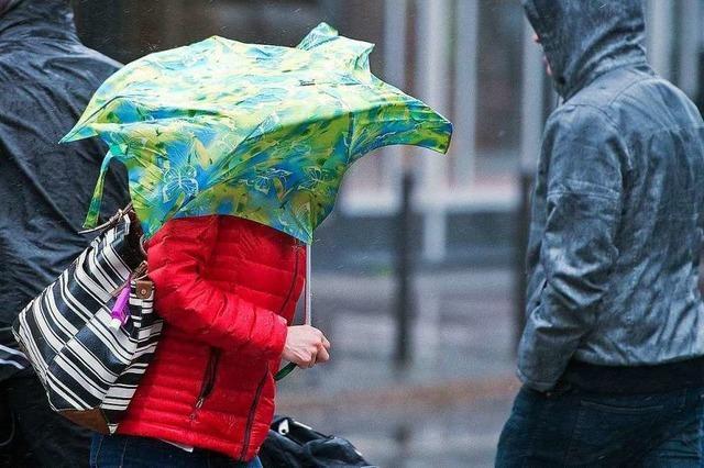 Höchste Unwetterwarnstufe für Teile des Schwarzwaldes