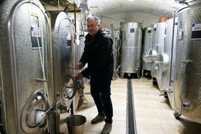 Die Heizlüfter im Keller der IG Weinbau laufen auf Hochtouren