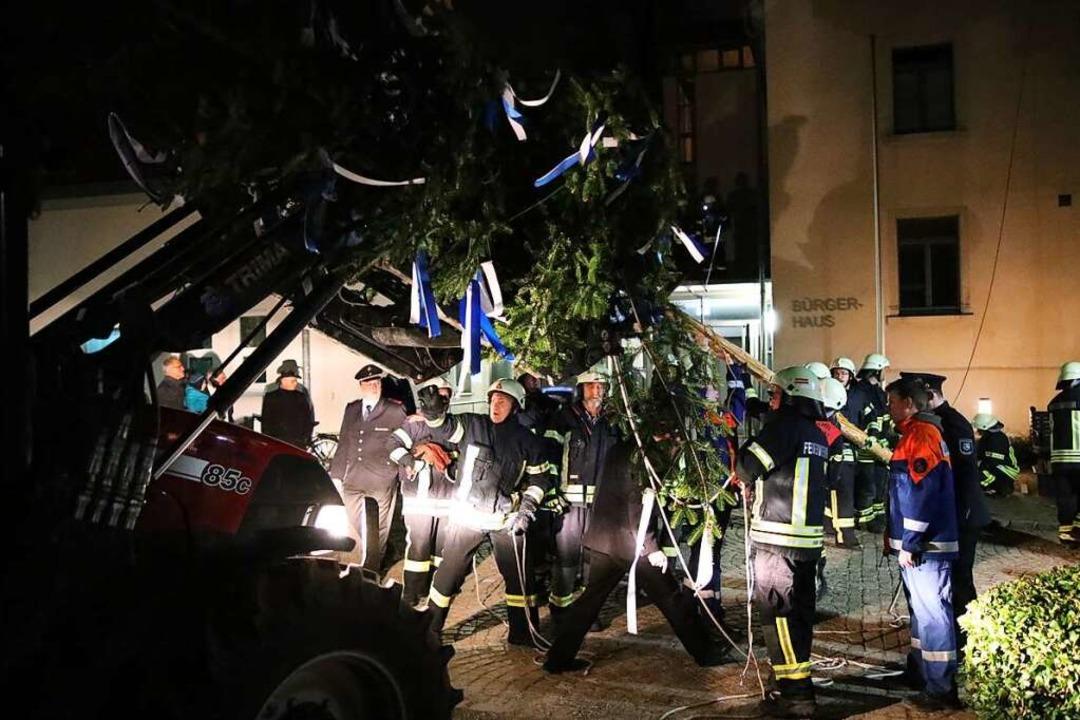Direkt nach der Wahl wurde der Bürgermeisterbaum von der Feuerwehr aufgestellt.  | Foto: Janos Ruf