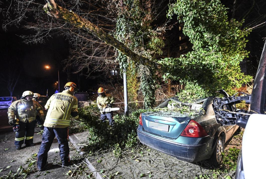 In Freiburg wurde ein parkendes Auto von einem Baum getroffen.  | Foto: Patrick Seeger (dpa)