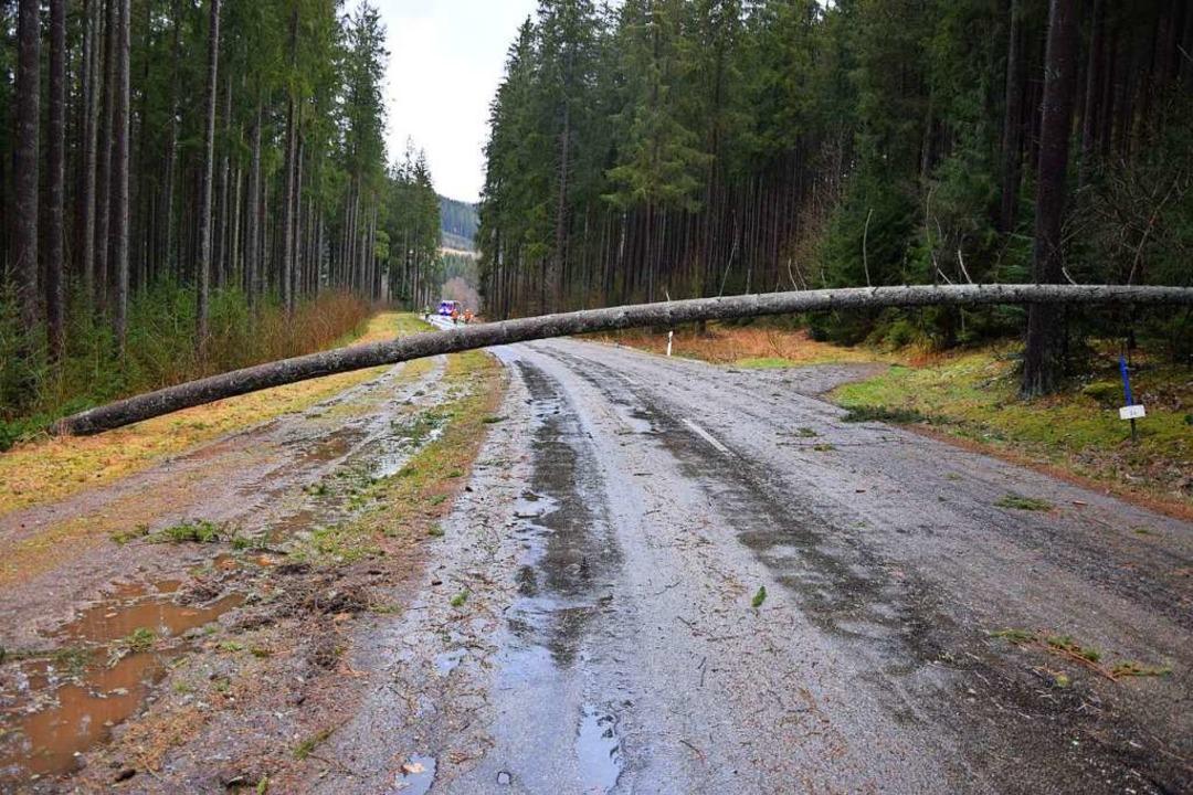 Eine der vielen Straßen, die blockiert sind.  | Foto: Kamera24