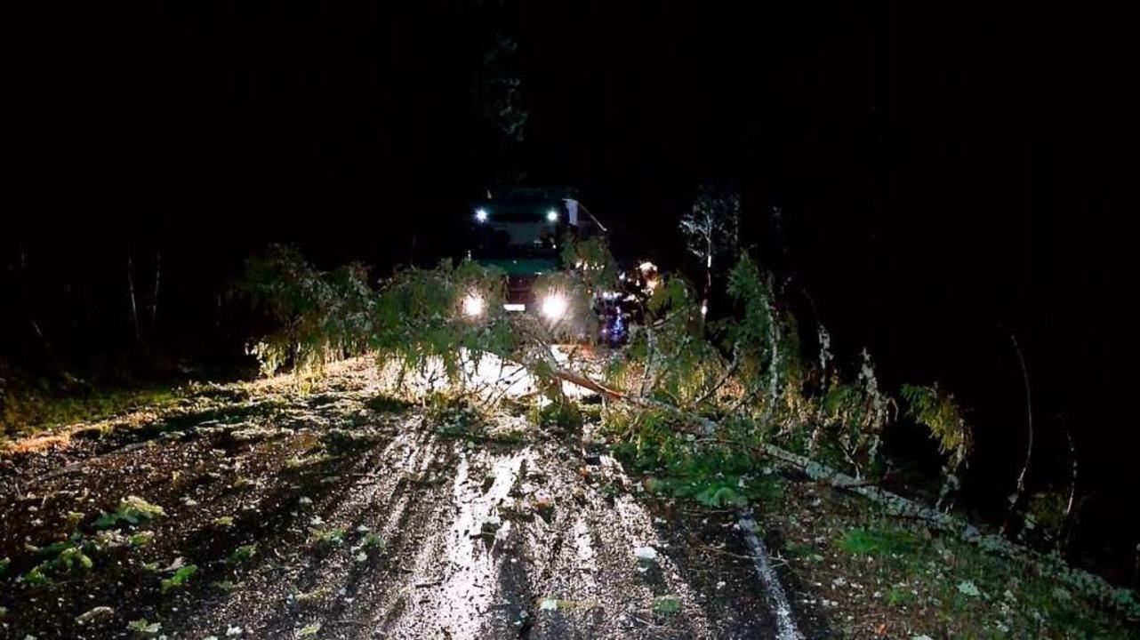 Am frühen Morgen ist auf B 315 zwische...in Baum  auf einen Lastwagen gestürzt.  | Foto: Kamera 24