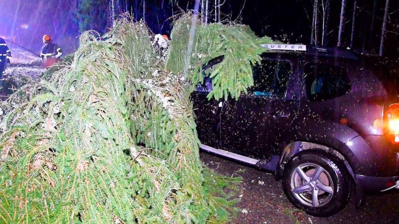 Auf der Landesstraße 156 stürzte ein B...  Kappel nach Neustadt unterwegs  war.  | Foto: Kamera 24