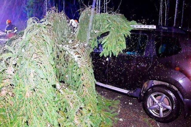 Bäume treffen vier Fahrzeuge, ein Verletzter