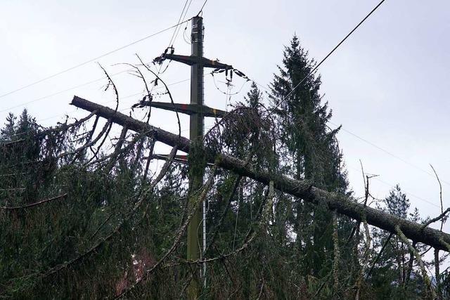 Landratsamt Breisgau-Hochschwarzwald berichtet von 200 Einsätzen im Kreis