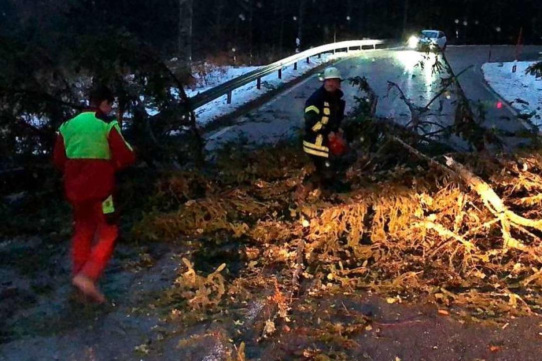 Umgestürzte Bäume, gesperrte Straßen: ... Dreisamtal die Einsatzkräfte in Atem.    Foto: Badenova