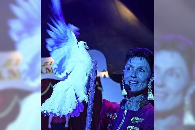 Tauben, Tanz und Entenparade