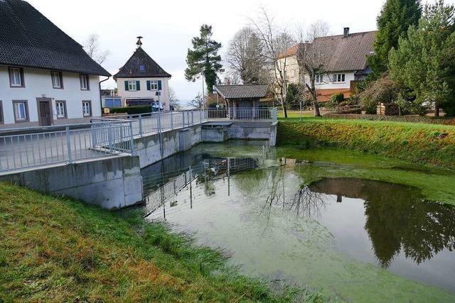Haben Bauarbeiten der Stadt Zell Risse an Häusern verursacht?