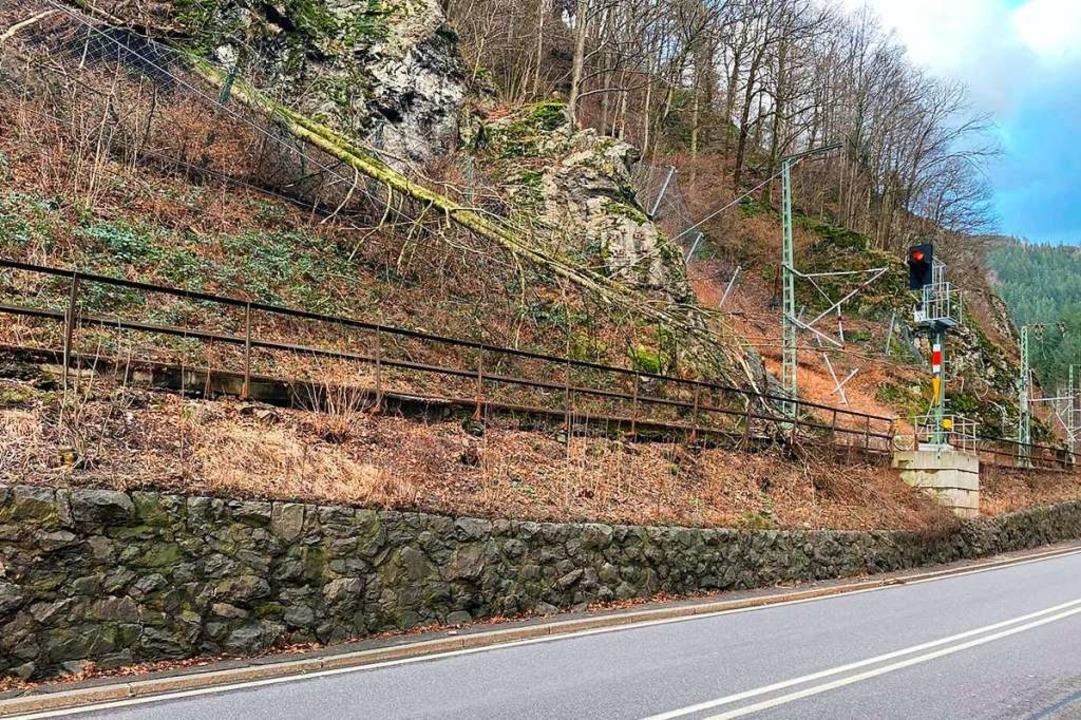 Sturmschäden im Höllental: Bäume und Ä...ung und den Gleisen der Höllentalbahn.  | Foto: Kamera 24