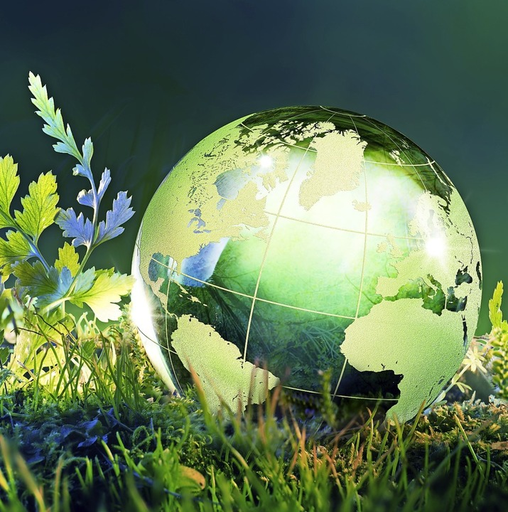 Wie grün ist es noch, wenn es auf der Erde heißer wird?  | Foto: Romolo Tavani