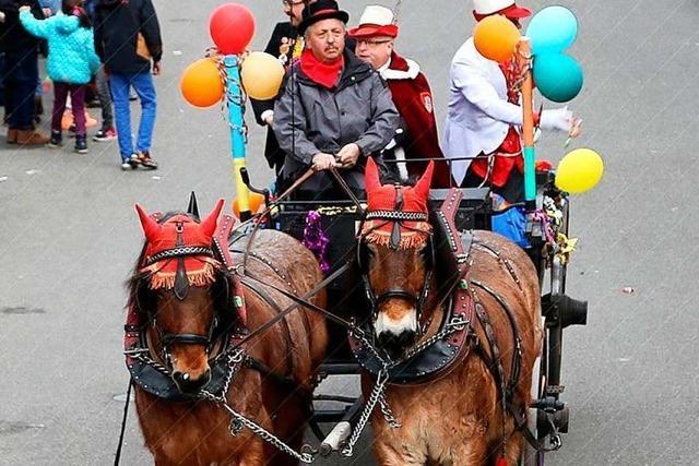 Pferde auf Fasnachtsumzügen – Brauchtum oder Tierquälerei?