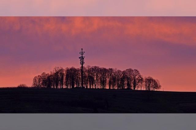 Schutterlindenberg im Morgenrot