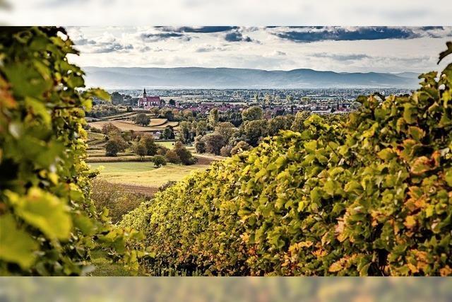 Ettenheim unter den Top Fünf