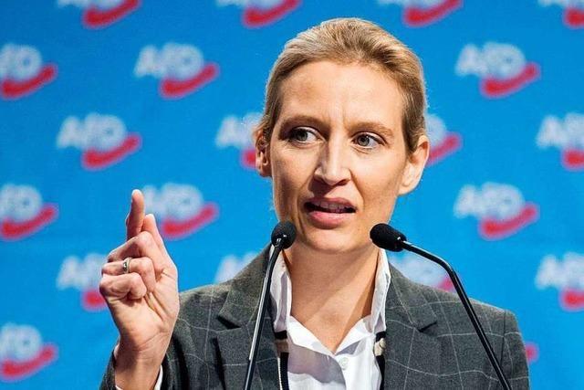 Vor dem AfD-Parteitag: Höckes Arm reicht bis nach Baden-Württemberg