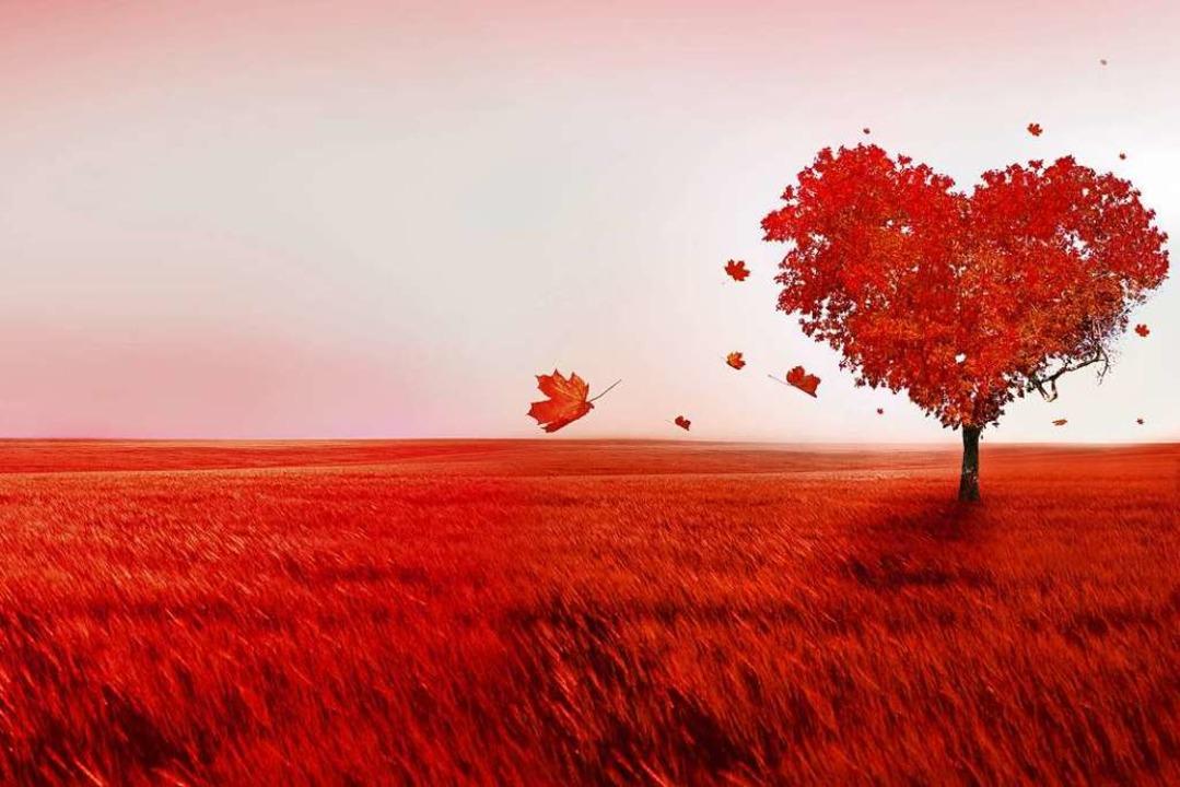 Die Liebe ist auch vergänglich. Besond... vielen Menschen der Partner abhanden.  | Foto: Lilya - stock.adobe.com