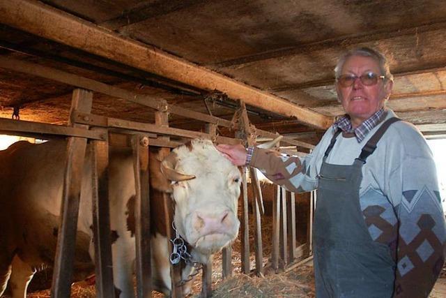 Die letzte Kuh verlässt in Kippenheimweiler den Stall