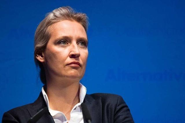 Alice Weidel baut mit Übernahme des AfD-Landesvorsitzes ihre Macht aus