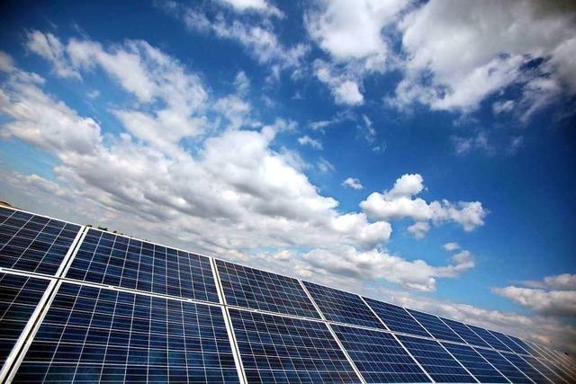 Land will mehr Solarstrom auf Grünland erzeugen – Konflikte sind absehbar
