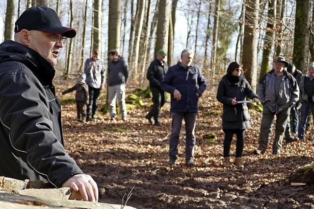 Hugo Sturm braucht nie ums Holz steigern