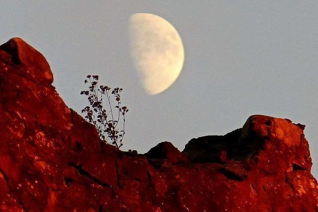 Mond und Sonne lassen die Mauer der Emmendinger Hochburg leuchten