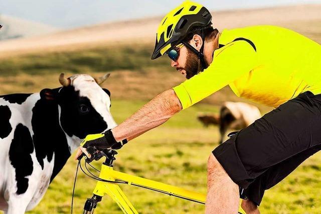 Können Kühe, Mountainbiker und Wanderer die Natur ohne Konflikte nutzen?