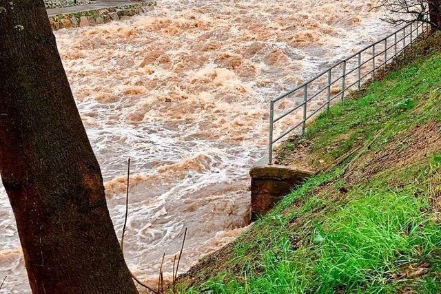 Dreisamradweg ist wegen Hochwasser erneut gesperrt