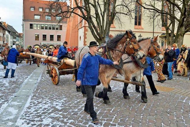 Seit 50 Jahren stellen die Fasnetrufer den Narrenbaum auf dem Freiburger Rathausplatz auf